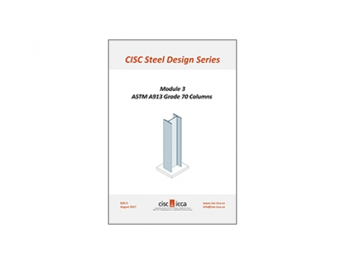 Steel Design Series – Module 3 (SDS3)