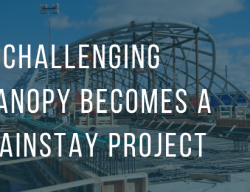 A Challenging Canopy Becomes a Mainstay Project